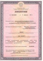 Лицензия на осуществление деятельности по реставрации объектов культурного наследия (памятников истории и культуры) страница 1